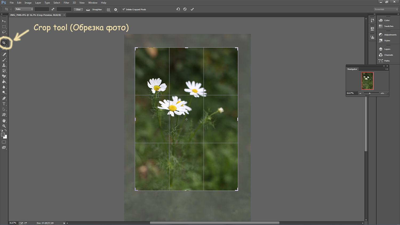 просто фоторедактор обрезать фото по контуру возможно повлияло